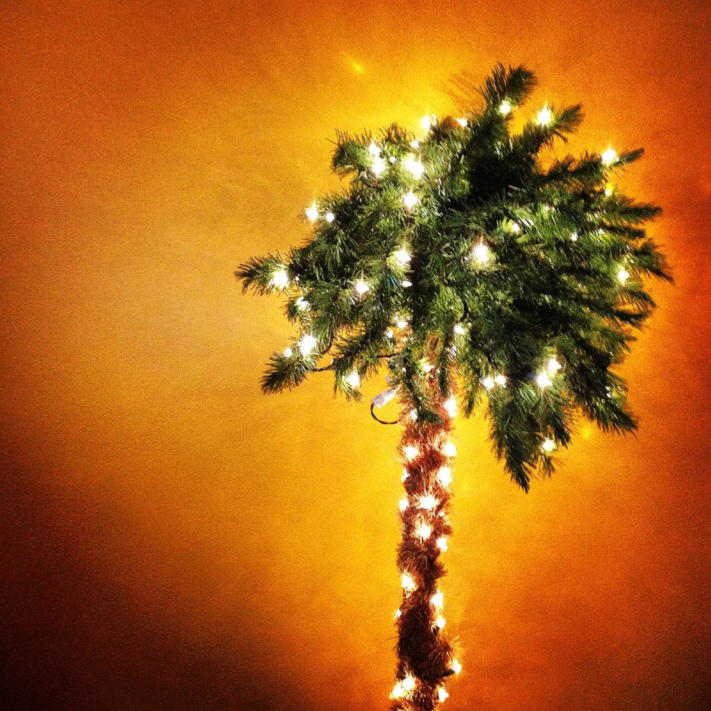 Plastic palm tree lit with white Christmas lights